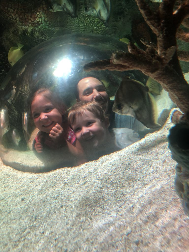 Where to go with kids in KC_Sea Life