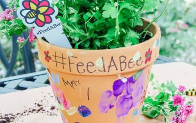 How to make a bee pollinator with kids