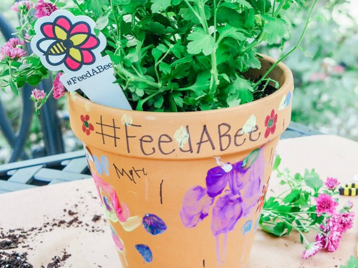 How To Create A Pollinator-Friendly Garden with Kids