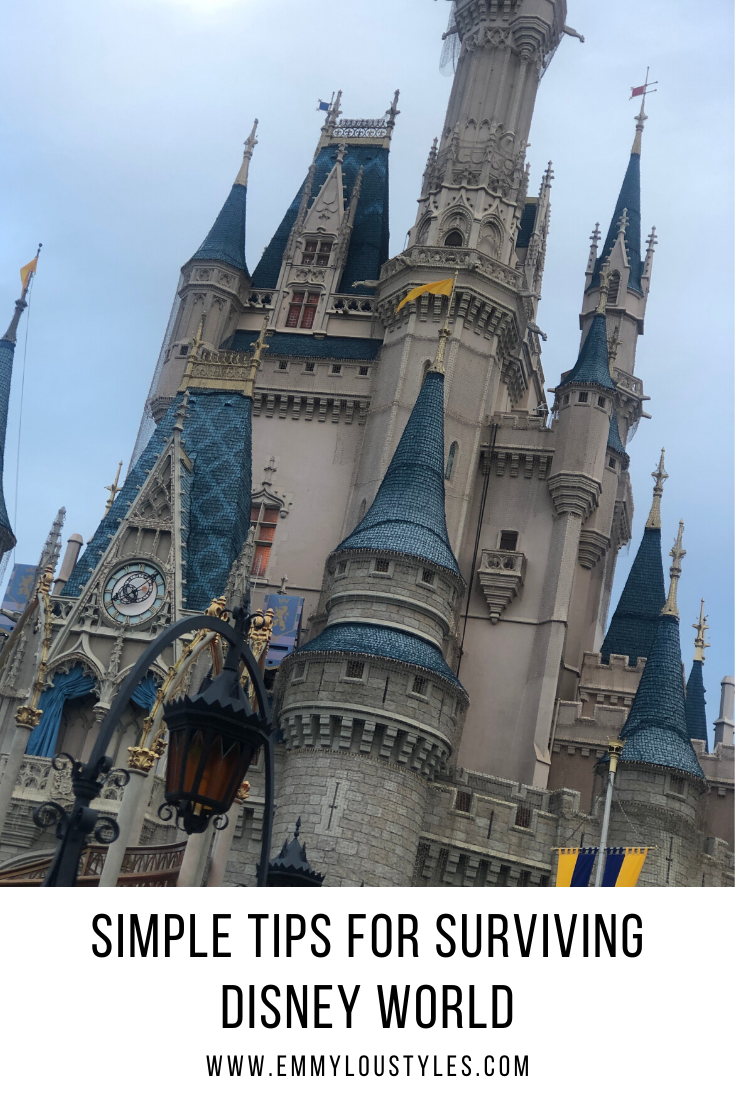 Simple tips for surviving disney world